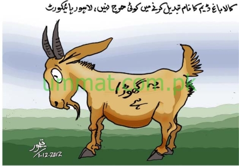 CARTOON_Name of Kalabagh Dam should be changed