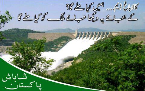 Widget_Kalabagh Dam is in the interest of Pakistan