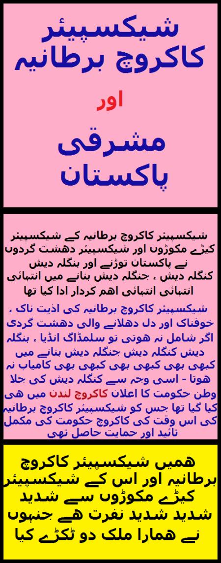 Widget_SCB and E-Pakistan