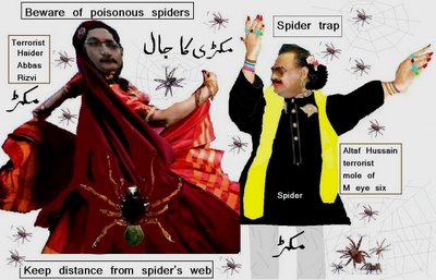 Altaf Harami is a Spider