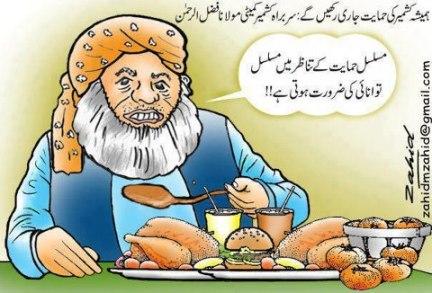 Maulana Fazlur Rehman, Food & Kashmir