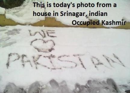 Pic_Kashmiris Love Pakistan