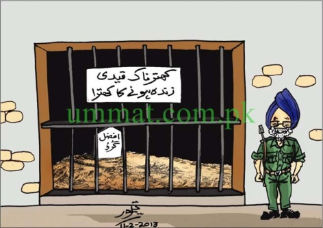 CARTOON_Afzal Guru's grave