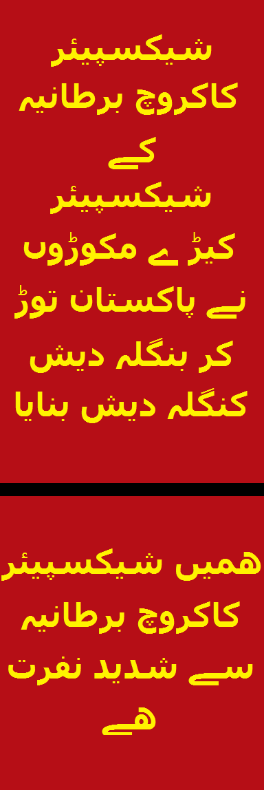 Widget_SCB made Bdesh