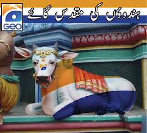 GEO TV_GEO in the shape of Hindu Cow