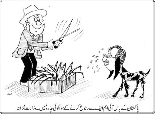 IMF Cartoon_IMF is the last resort