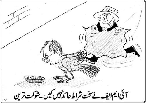 IMF Cartoon_IMF Soft Conditions