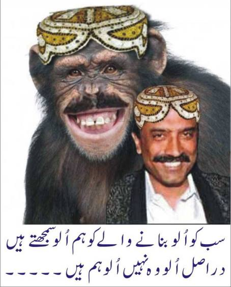 Widget_Zardari is a Monkey