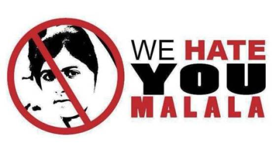 Widget_We hate you Malala