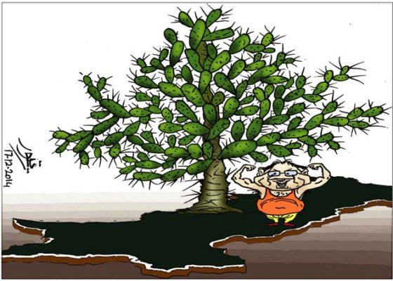 CARTOON_Cactus tree of Musharraf_Umt_19-12-14