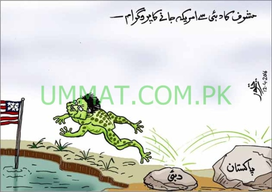 CARTOON_Musharraf Frog goes to USA from Dubai_UMT_13-04-16